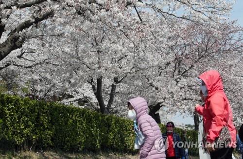 초봄 꽃샘추위에 경량패딩 등 방한용품 매출 '쑥쑥'