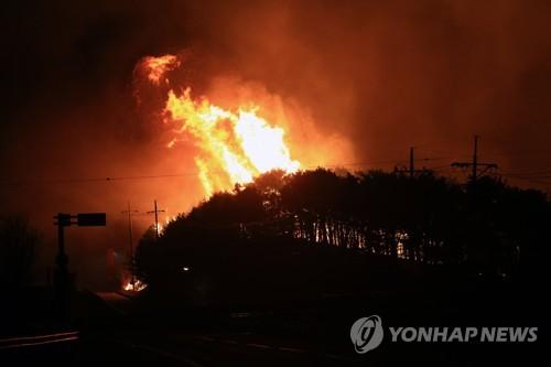 10년간 산불 피해면적 서울 9분의1…입산자 실화가 주원인