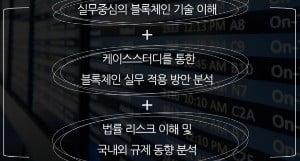 '블록체인 비즈니스 실무과정' 개요. / 출처=딜로이트 제공