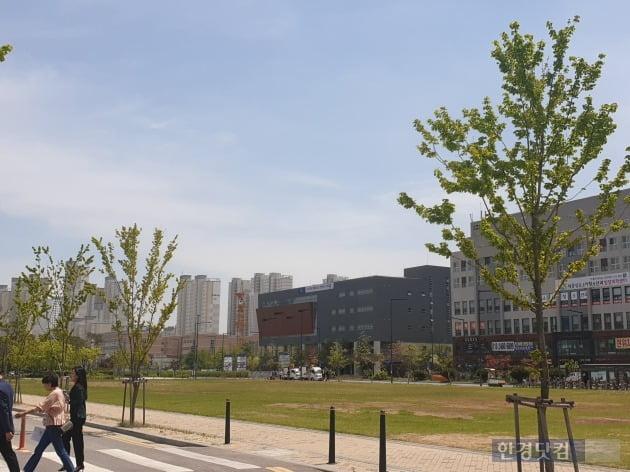 세종시 정부종합청사 주변의 상가와 아파트 전경(사진 김하나 기자)