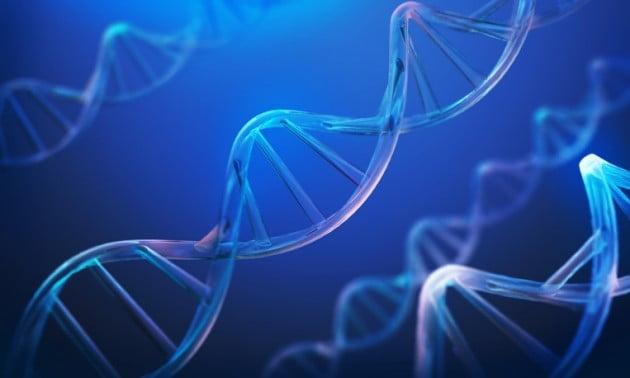 이준호 서울대 교수, 환경 조건에 따른 유전체 변화 양상 첫 규명