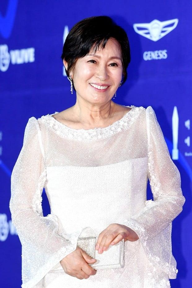 '2019 백상예술대상' 김혜자 /사진=한경DB