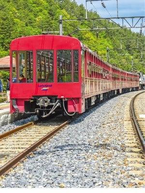 분천역에서 출발하는 백두대간 협곡열차 V-트레인
