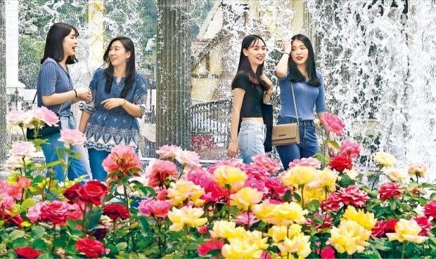 꽃보다 청춘…100만송이 장미 축제