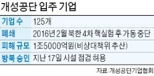 """개성공단 기업, 이르면 이달 말 방북…""""시설점검 협의때 기업 목소리 반영을"""""""