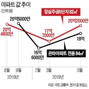 """""""강남 대체할 신도시 없다""""…잠실5단지 급등"""