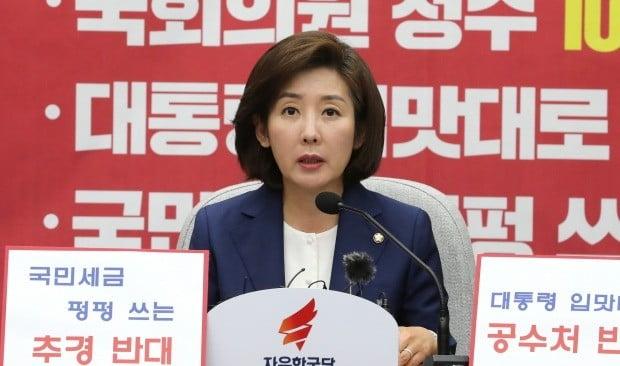"""자유한국당 나경원 원내대표는 16일 유튜브 방송 '김광일의 입'에 출연해 """"권력구조 개헌을 통해 사실상 의원내각제로 가자는 것이고, 선거가 1년 남아서 실질적으로 어렵다""""고 말했다. /사진=연합뉴스"""