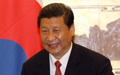 시진핑 중국 국가 주석 / 한경 DB
