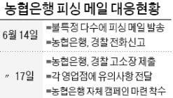 """""""고객님 계좌가 대포통장으로 사용됐습니다""""…농협직원 사칭한 '피싱메일' 기승"""