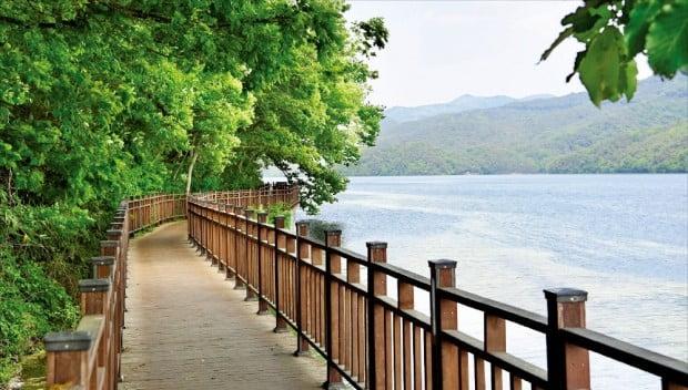 지난 2월 한국관광공사의 '대한민국 대표 걷기길'로 선정된 전남 장성군 장성호 수변길.  장성군 제공