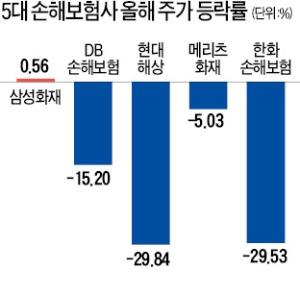 손해보험株 추락…출혈 경쟁에 바닥 안보인다
