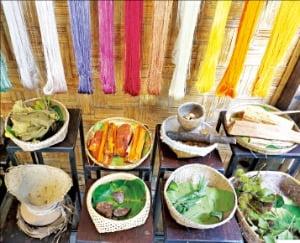 루앙프라방은 세계적인 인디고, 목화 재배지다.