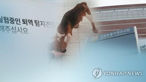 경찰 '복제견 불법실험' 의혹 이병천 교수 소환조사