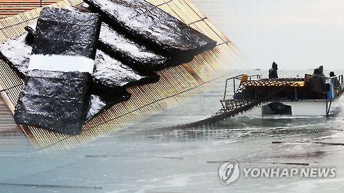 '큰손' 일본에 40년만의 김 흉년…韓 수출 최고치 찍나