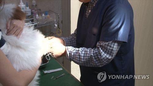 '제각각' 동물병원 진료비…표준진료제 도입한다