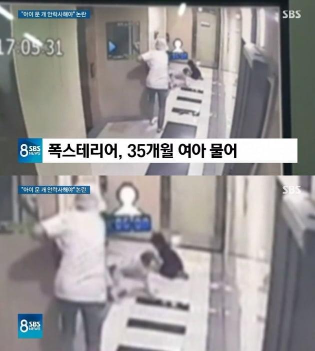 경기도 용인의 한 아파트에서 폭스테리어가 4살 아기를 무는 모습이 CCTV에 찍혔다/사진=SBS '8뉴스' 영상 캡처