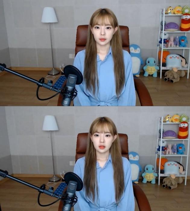 잼미 해명 /사진=유튜브 캡처