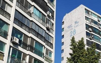 """강남의 반격<br>""""1대1 재건축"""""""