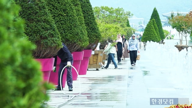 대형 화분으로 꽉 찬 광화문 광장/사진=조상현 기자