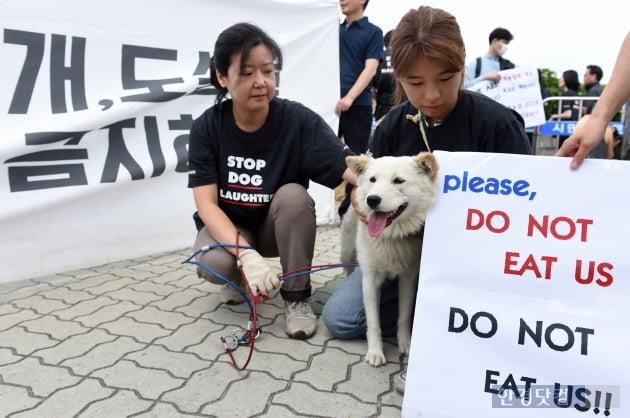 [포토] 우리를 먹지 마세요