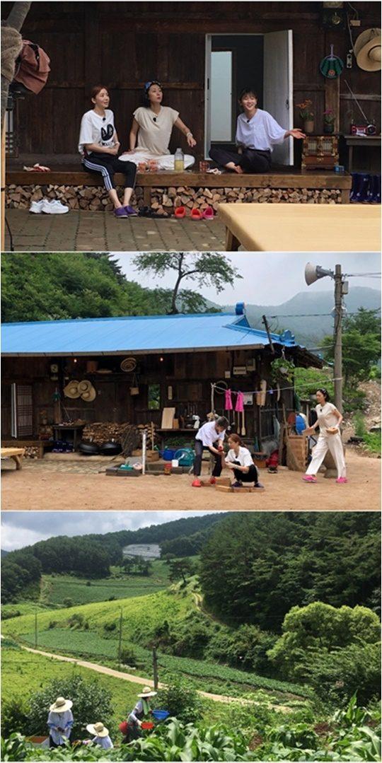 tvN 예능 '삼시세끼 산촌편'./ 사진제공=tvN