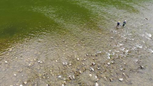 [렛츠고 피싱] 흐르는 강물처럼…견지낚시에 빠지다