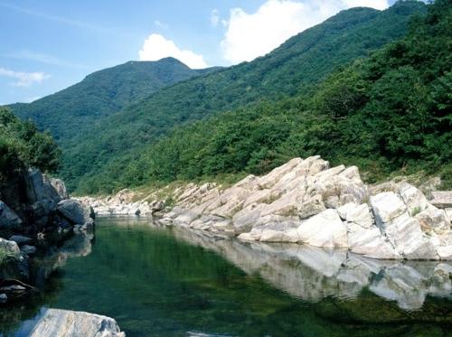[여긴 가봐야지:경남] 에메랄드빛 바다, 대나무·연꽃 매력에 '푹'