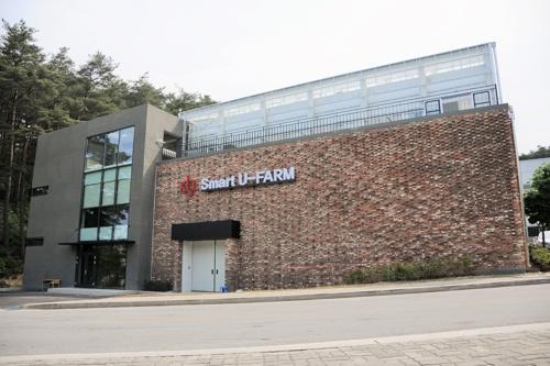 """""""ICT 접목하니 식물 유용성분 쑥쑥""""…KIST, 스마트팜 공개"""