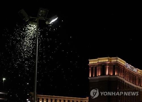 메뚜기떼 美라스베이거스 점령…습한 날씨가 영향 끼쳐
