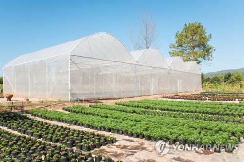국내 비닐하우스 상당수 일본산 필름 사용…국산화 잰걸음