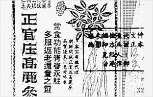 정관장 상표 관련 1959년 12월 성도일보 광고 [사진=한국인삼공사 제공]