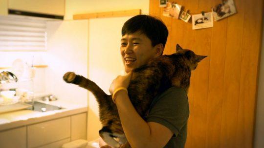 EBS1 '고양이를 부탁해4' 스틸컷. /사진제공=EBS