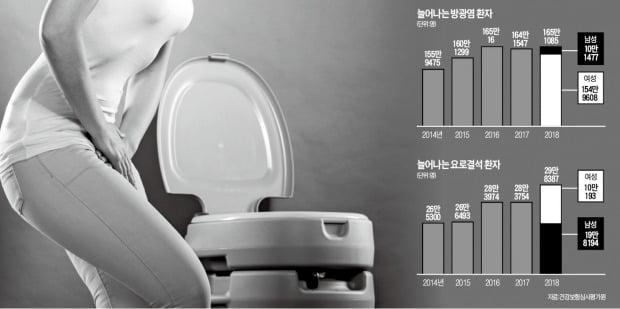 '여름철 불청객' 방광염·요로결석…하루에 물 2L 마시면 예방