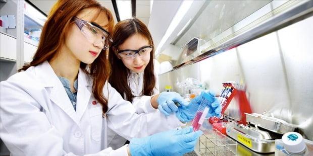 정부가 혁신성장 분야로 꼽은 바이오헬스산업이 여전히 규제에 막혀 어려움을 겪고 있다. LG화학 연구원들이 신약 개발 연구를 하고 있다.  /LG화학  제공