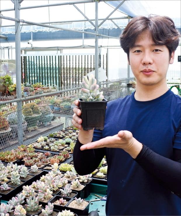 김문찬 대표가 '팜통령의 다육농원'에서 재배하고 있는 다육이를 소개하고 있다.