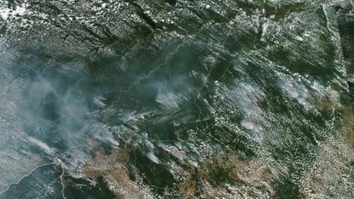 브라질 대통령 '아마존 열대우림 산불 NGO 탓' 발언에 비난 쇄도