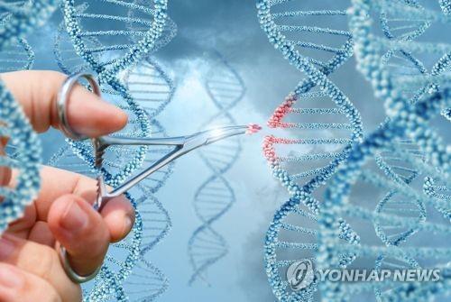 유전자 편집 논란에 팔 걷은 WHO…'유전자 연구등록제' 추진