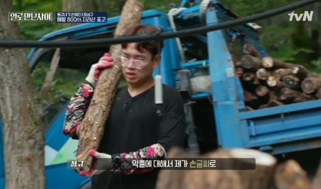 /사진=tvN '일로 만난 사이'