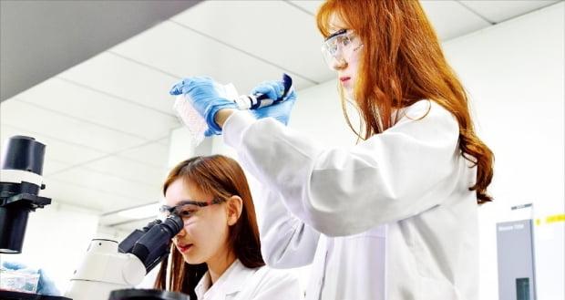 LG화학 생명과학사업본부 연구원들이 서울 마곡 LG사이언스파크 연구소에서 신약 개발 연구를 하고 있다.   LG화학 제공