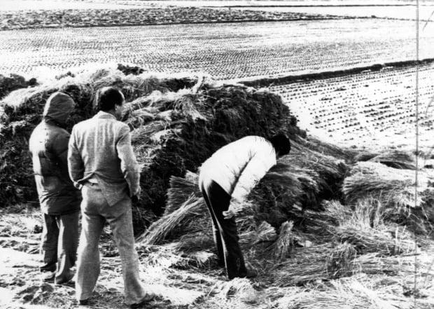 1987년 1월 5차 화성연쇄살인사건 현장인 화성 황계리 현장을 경찰이 살펴보고 있다.(사진=연합뉴스)