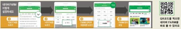 [이번주 뜨거웠던 FARM] '한국의 라벤더' 맥문동을 아시나요