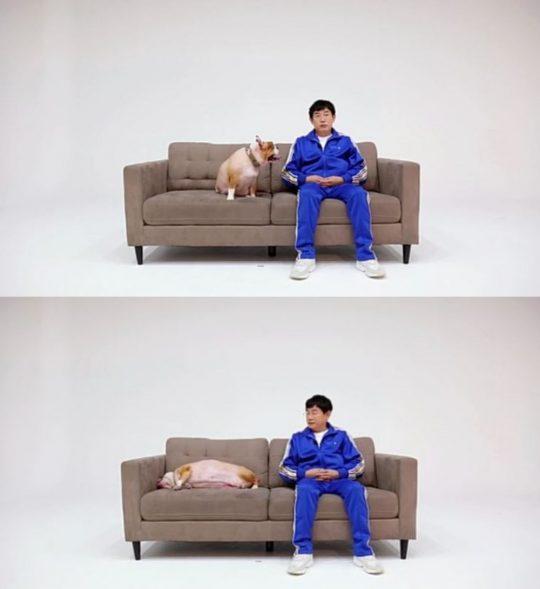 '개는 훌륭하다' 티저 이미지. /사진제공=KBS