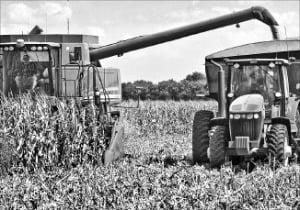 곡물값 반등, 고개 든 농산물펀드