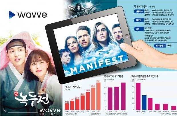 그래픽=신택수 기자 shinjark@hankyung.com