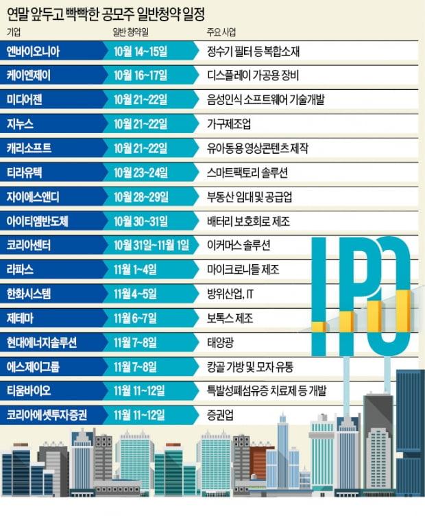 """""""연내 상장 가즈아""""…16곳 'IPO 랠리' 스타트"""