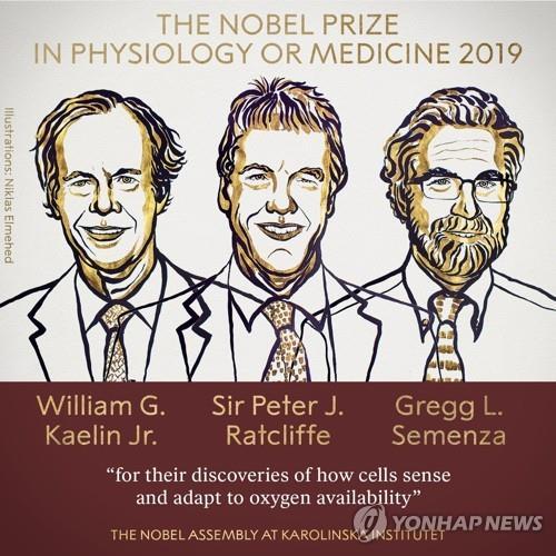 '산소 부족에도 살아남는 세포' 규명에 노벨생리의학상 영예