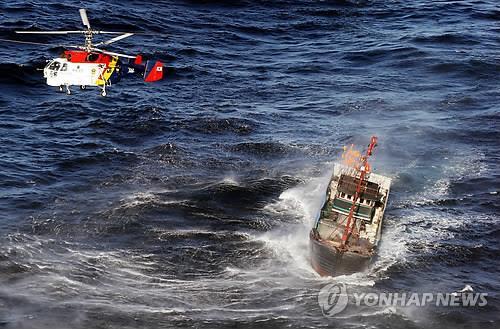 해양경찰청 헬기 18대 중 절반 야간 운항 불가능