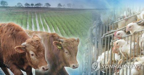 美 '개도국 제도 개선' 요구 시한 열흘…농업은 어떻게 되나