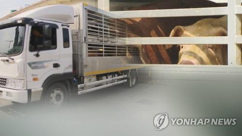 정부, 돼지 살처분 처리비로 특교세 74억원 추가지원