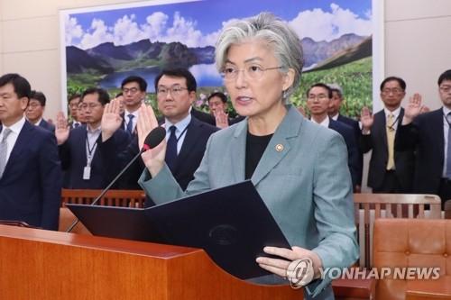 """강경화 """"북미 실무협상, 北안전보장도 논의되지 않을까 예상"""""""